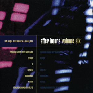 VARIOUS - After Hours Volume Six