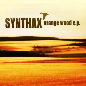 SYNTHAX - Orange Wood EP