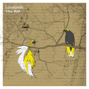 LOVEBIRDS - The Rat