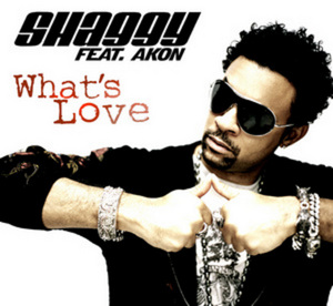 SHAGGY feat AKON - What's Love