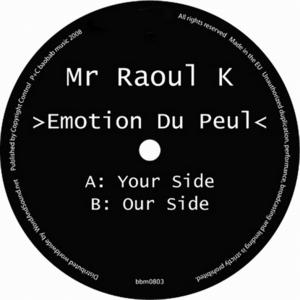MR RAOUL K - Emotion Du Peul
