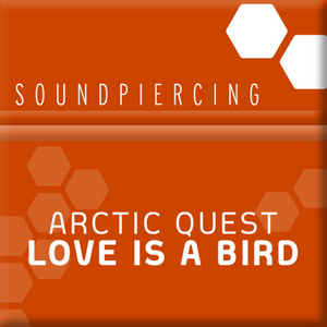 ARCTIC QUEST - Love Is A Bird
