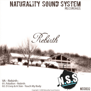 PALADION/D LIVSY/A-SIZE - Rebirth