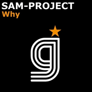 SAM PROJECT - Why