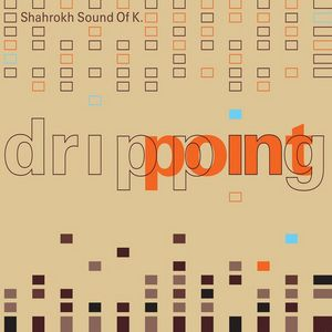 SHAHROKH SOUND OF K - Dripping Point