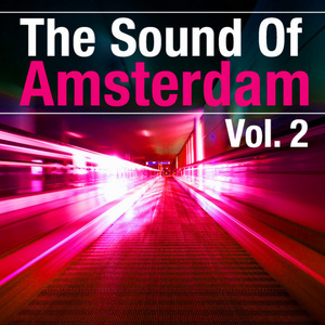 VARIOUS - The Sound Of Amsterdam Vol 2