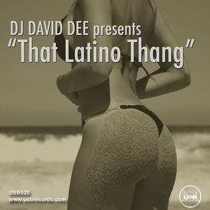 DJ DAVID DEE - That Latino Thang