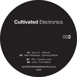 SYNC 24/MATT WHITEHEAD/ADJ/JUNQ - Cultivated Electronics EP 2