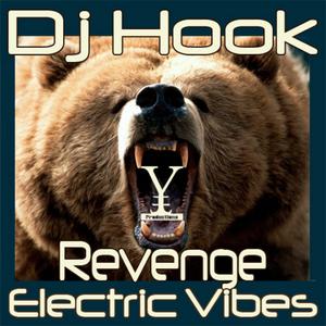 DJ HOOK - Revenge
