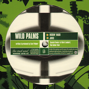 LEE CURTIS CONNECTION/WILD PALMS - Two Track Minds