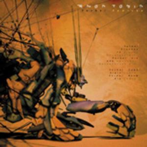 TOBIN, Amon - Verbal (remixes)