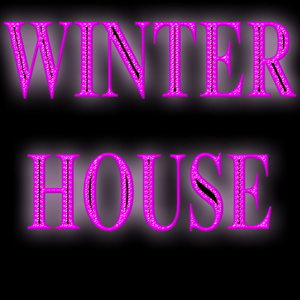 VARIOUS - Winter House