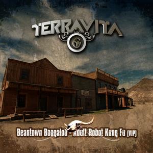 TERRAVITA - Beantown Boogaloo