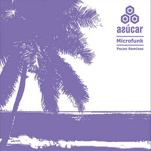 MICROFUNK - Pecan (remixes)