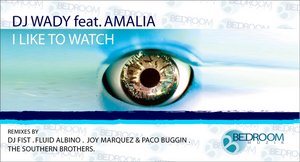 DJ WADY feat AMALIA - I Like To Watch