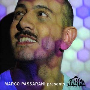 PASSARANI, MARCO/VARIOUS - Marco Passarani Presents Peacefrog (unmixed tracks)