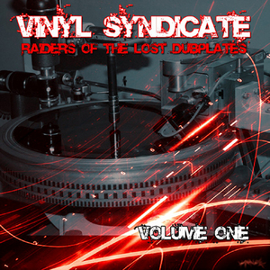 Raiders Of The Lost Duplates Vol 1 By Vinyl Syndicate Slip