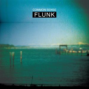 FLUNK - Common Sense