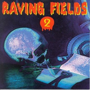 VARIOUS - Raving Fields 2 Megamix