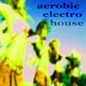 VARIOUS - Aerobic Electro House (unmixed tracks)