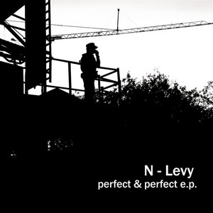 N LEVY - Perfect & Perfect EP