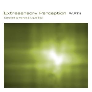VARIOUS - Extrasensory Perception: Part 2 (unmixed tracks)