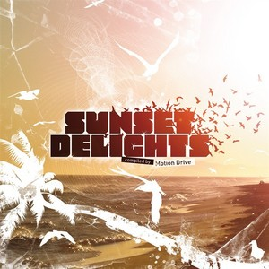 VARIOUS - Sunset Delights (unmixed tracks)
