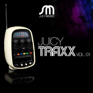 VARIOUS - Juicy Traxx: Vol 01 (unmixed tracks)