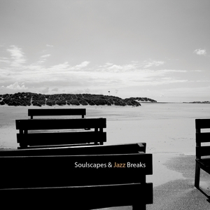 PAT D & LADY PARADOX - Soulscapes & Jazz Breaks