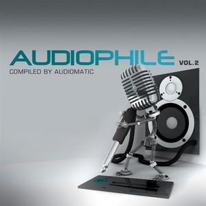 VARIOUS - Audiophile: Vol 2 (unmixed tracks)