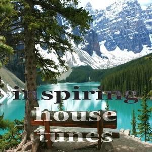VARIOUS - Inspiring House Tunes