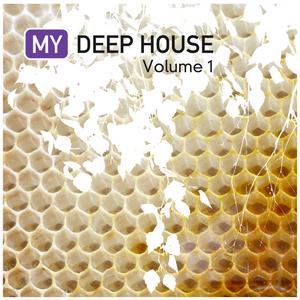 VARIOUS - My Deep House Vol 1