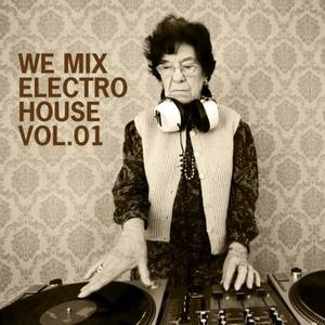 VARIOUS - We Mix Electro House: Vol 01