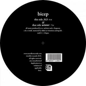 BICEP - 313