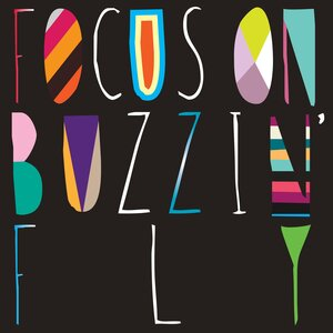 VARIOUS - Focus On : Buzzin' Fly Mixed By Chris Woodward