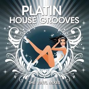 VARIOUS - Platin House Grooves (The Vinyl mixes)