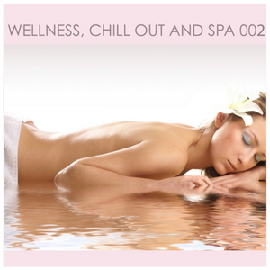 VARIOUS - Wellness Chill Out & SPA: Vol 02