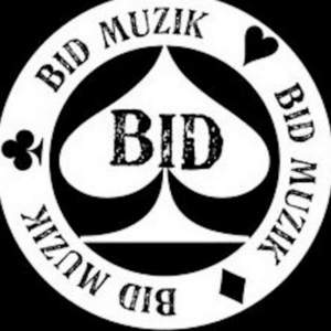 BIDDLE, Sean/THE MILE HIGH CLUB - Bid Muzik: Collection .01