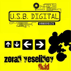 VESELINOV, Zoran - Fluid