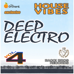 VARIOUS - House Vibes: Deep Electro (Vol 4)