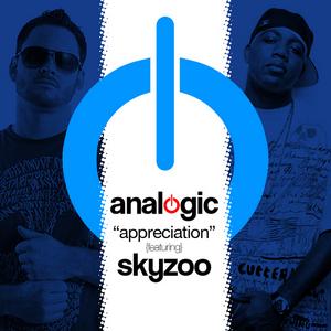 ANALOGIC/SKYZOO - Appreciation