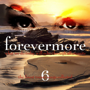 BLACK HOLE/VARIOUS - Forevermore Vol 6 (unmixed tracks)