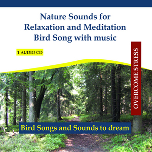 RETTENMAIER - Nature Sounds For Relaxation & Meditation Bird Song With Music In The Forest (continuous mix)
