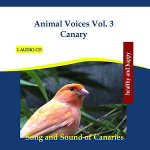 RETTENMAIER - Animal Voices Vol 3 Canary: Song & Sound Of Canaries (continuous mix)