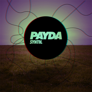 PAYDA - Synth EP