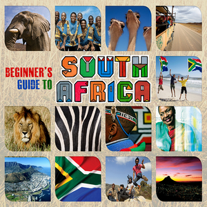 VARIOUS - Beginner's Guide To South Africa