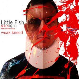 LITTLE FISH aka DJ DD/MAESTRO DANIEL REIS & MARCELO MEDEIROS - Weak-Kneed
