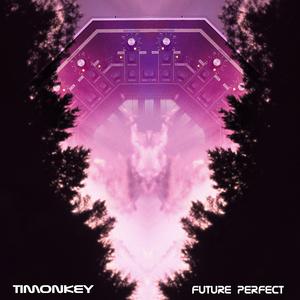 TIMONKEY - Future Perfect