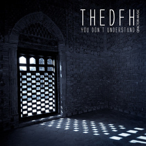 THEDFH - You Don't Understand
