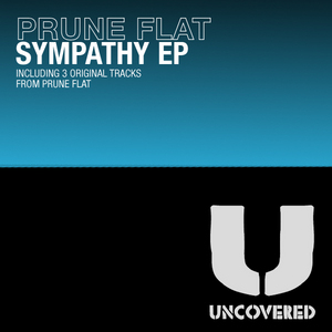 PRUNE FLAT - Sympathy EP